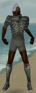 Necromancer Necrotic Armor M gray chest feet front.jpg