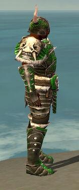 Warrior Norn Armor M dyed side.jpg