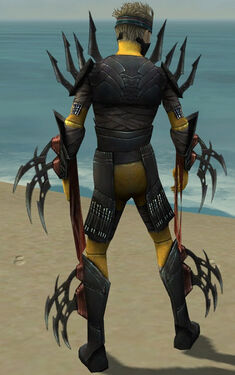 Assassin Ancient Armor M dyed back.jpg