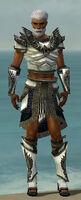 Paragon Obsidian Armor M gray front.jpg