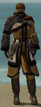 Ranger Norn Armor M dyed front.jpg