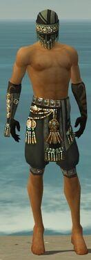 Ritualist Elite Luxon Armor M gray arms legs front.jpg