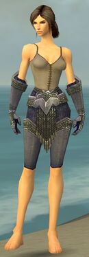 Warrior Platemail Armor F gray arms legs front.jpg