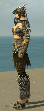 Warrior Silver Eagle Armor F dyed side.jpg