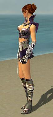 Elementalist Deldrimor Armor F gray side.jpg