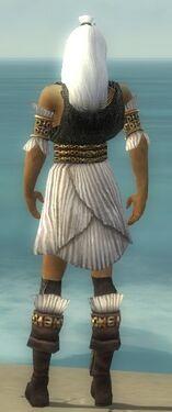 Elementalist Elite Sunspear Armor M gray chest feet back.jpg