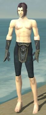 Elementalist Tyrian Armor M gray arms legs front.jpg