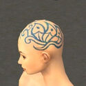 Monk Elite Canthan Armor F dyed head side.jpg