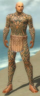 Monk Flowing Armor M gray front.jpg
