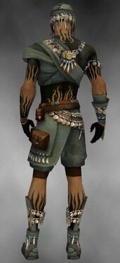 Ritualist Luxon Armor M gray back.jpg