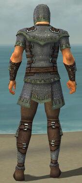 Warrior Tyrian Armor M gray back.jpg