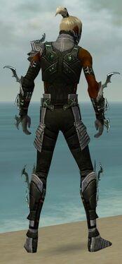 Assassin Elite Luxon Armor M gray back.jpg