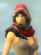 Festive Winter Hood gray front.jpg