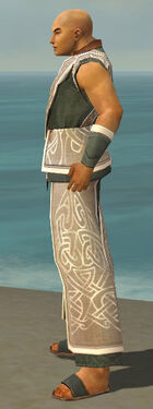 Monk Tyrian Armor M gray side.jpg