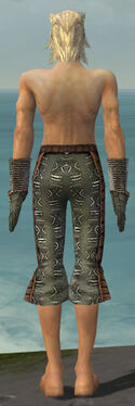 Elementalist Istani Armor M gray arms legs back.jpg