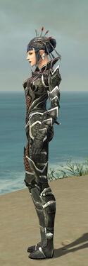 Necromancer Elite Kurzick Armor F gray side.jpg