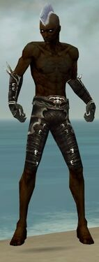 Necromancer Shing Jea Armor M gray arms legs front.jpg