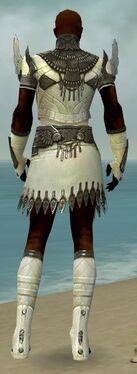 Paragon Vabbian Armor M gray back.jpg