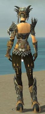 Warrior Silver Eagle Armor F dyed back.jpg