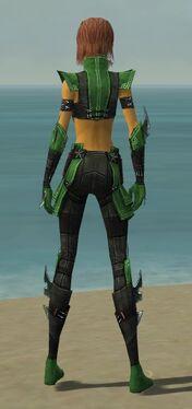Assassin Luxon Armor F dyed back.jpg