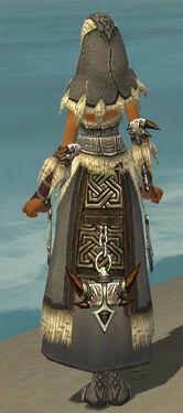 Dervish Norn Armor F gray back.jpg