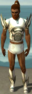 Paragon Asuran Armor M gray chest feet front.jpg