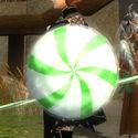 Wintergreen Shield