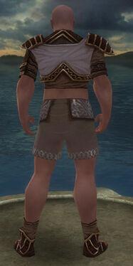 Monk Elite Canthan Armor M gray chest feet back.jpg