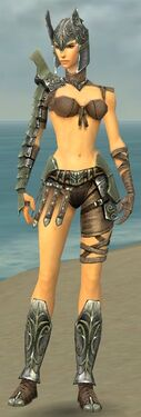 Warrior Elite Gladiator Armor F gray front.jpg