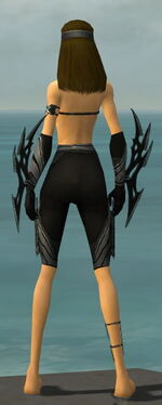 Assassin Vabbian Armor F gray arms legs back.jpg