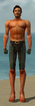 Mesmer Ancient Armor M gray arms legs front.jpg