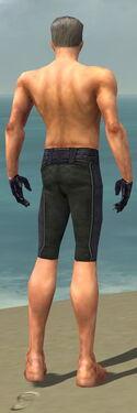 Mesmer Elite Elegant Armor M gray arms legs back.jpg