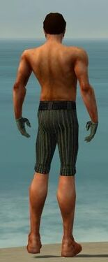 Mesmer Kurzick Armor M gray arms legs back.jpg