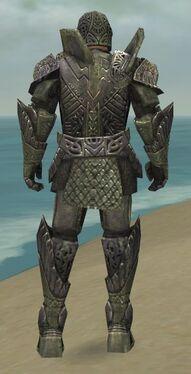 Warrior Elite Platemail Armor M gray back.jpg