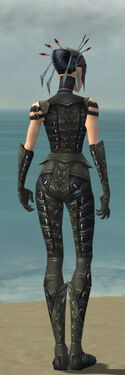 Necromancer Ascalon Armor F gray back.jpg