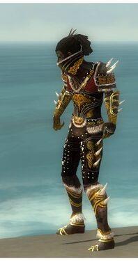 Necromancer Norn Armor M dyed side.jpg