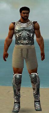 Warrior Istani Armor M gray chest feet front.jpg
