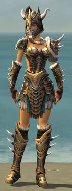 Warrior Norn Armor F dyed front.jpg