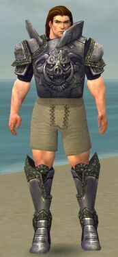 Warrior Platemail Armor M gray chest feet front.jpg