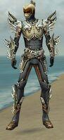 Assassin Asuran Armor M gray front.jpg