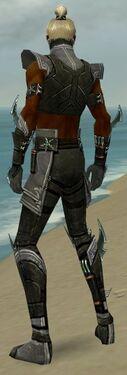 Assassin Luxon Armor M gray back.jpg