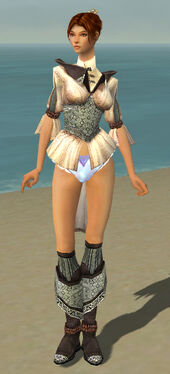 Elementalist Ancient Armor F gray chest feet front.jpg