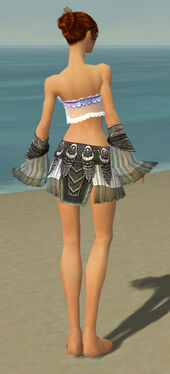 Elementalist Luxon Armor F gray arms legs back.jpg