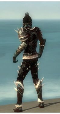 Necromancer Norn Armor M gray back.jpg