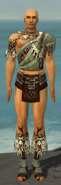 Ritualist Canthan Armor M gray chest feet front.jpg