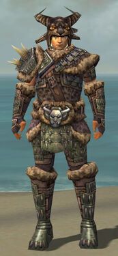 Warrior Charr Hide Armor M gray front.jpg
