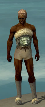 Dervish Norn Armor M gray chest feet front.jpg