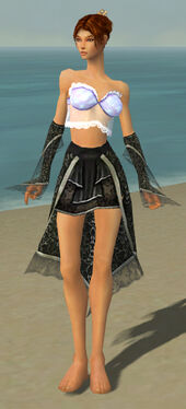 Elementalist Elite Canthan Armor F gray arms legs front.jpg