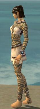 Monk Labyrinthine Armor F gray side.jpg