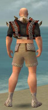 Monk Primeval Armor M gray chest feet back.jpg